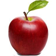 سیب قرمز مراغه یک کیلو