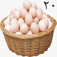 تخم مرغ ۲۰ عددی طلقی