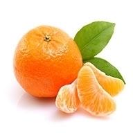 نارنگی جنوب  ۱  کیلوگرمی